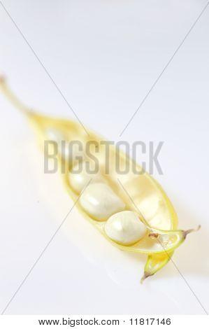 Beans in Pod
