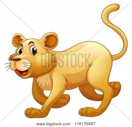 Lion walking alone on whitebackground illustration