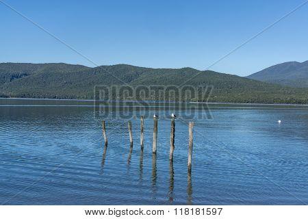 Te Anau Lake View