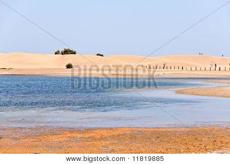 Maspalomas Desert In Gran Canaria, Canary Islands