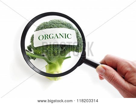 Organic Food Inspection