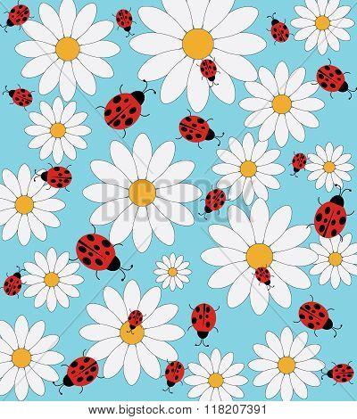 Daisy and ladybird pattern