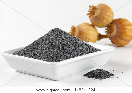 bowl of poppy seeds and poppy heads - close up