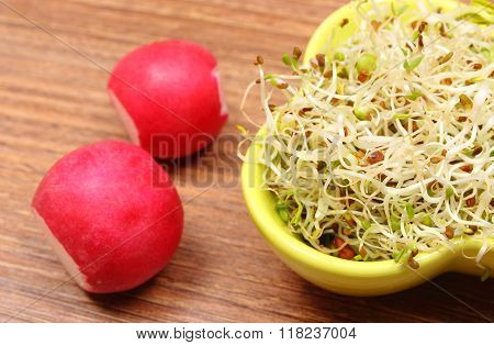 Bowl With Alfalfa Sprouts And Radish On Wooden Table