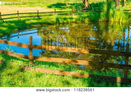 Beautiful A Stagnant Pond Surrounded By A Wooden Fence