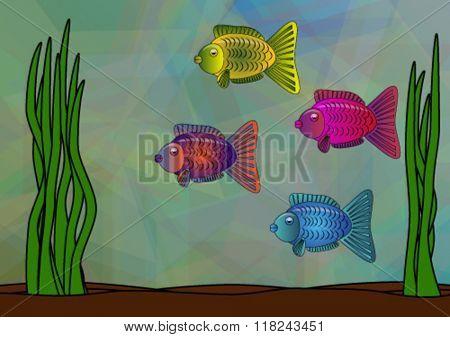 beautiful fish swim in an aquarium