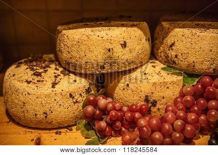 Pecorino sheep cheese