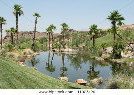 Beautiful golf course and pond