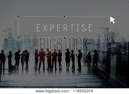 Expertise Ability Expert Professional Insight Concept