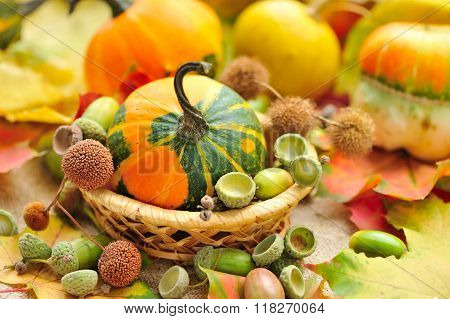Mini Decorative Pumpkin With Acorns On Autumn Leaves