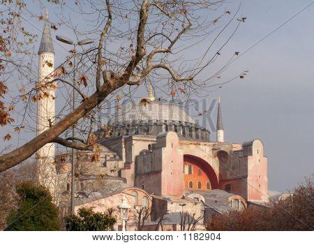 Sancta Sofia In Istanbul