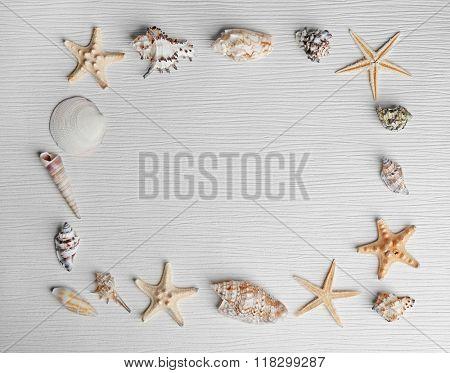 Frame shaped seashells on light background