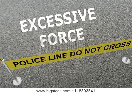 Excessive Force Concept