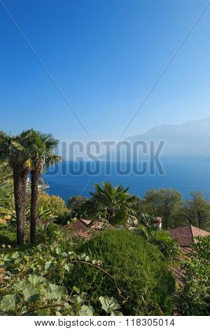 mountain landscape with palm trees and lake, blue sky