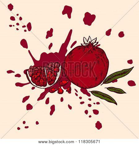 Pomegranate Retro Style