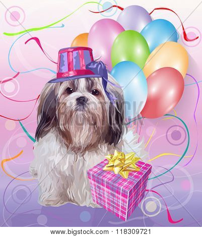 Shih tzu dog birthday. Cute puppy with gift and balloons.