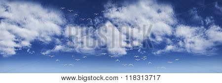 Panoramic landscape of blue sky with white clouds