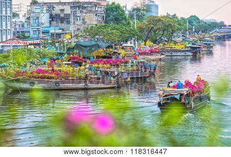 Boat dock flowers looking trafficking