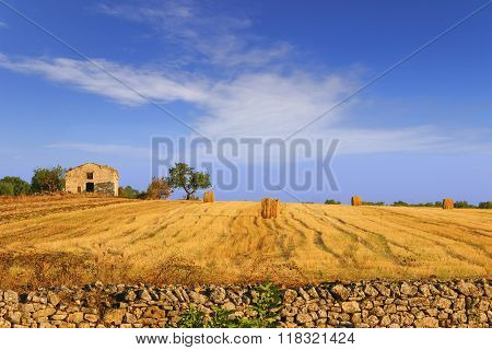 Summertime: rural landscape. Harvested field with bales of hay.- (Apulia) ITALY-