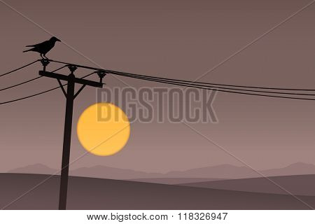 A Bird on Telephone Lines with Dark Sunrise, Sunset