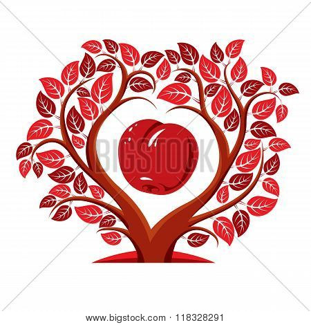 Vector Illustration Of Tree With Leaves And Branches In The Shape Of Heart With An Apple Inside. Fru