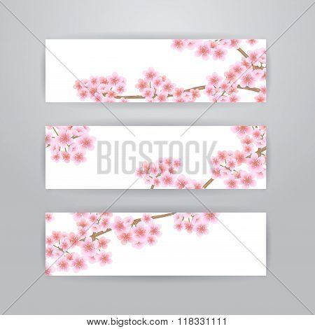 Sakura flowers banners