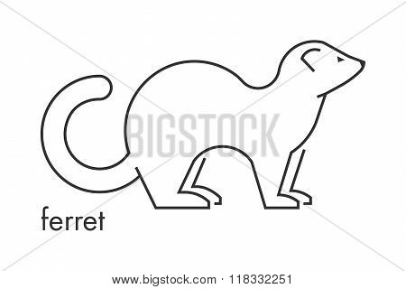 Vector Line Figure Of Ferret On A White Background.