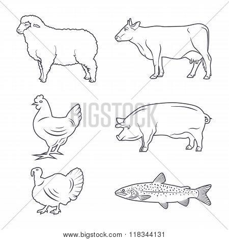 Farm Animals Contour Set