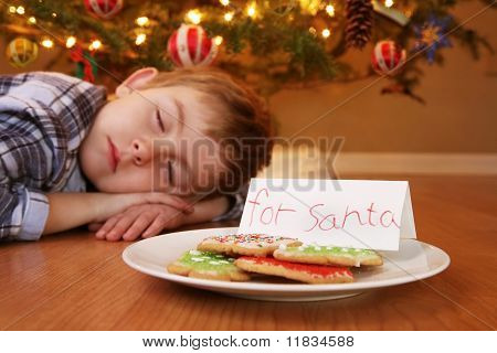 Sleeping Boy Waiting For Santa