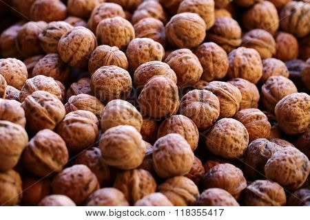 Many Walnuts In Brown Shells