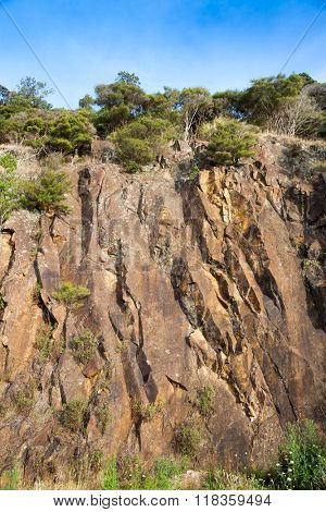 Rocky cliff face with bush on top at New Zealand coast