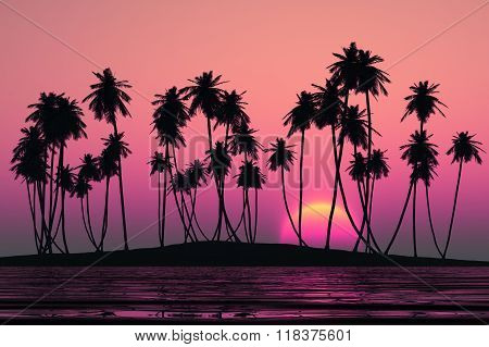 Coconut Palms Island
