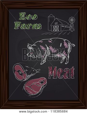 Eco Term With A Pig And Meat