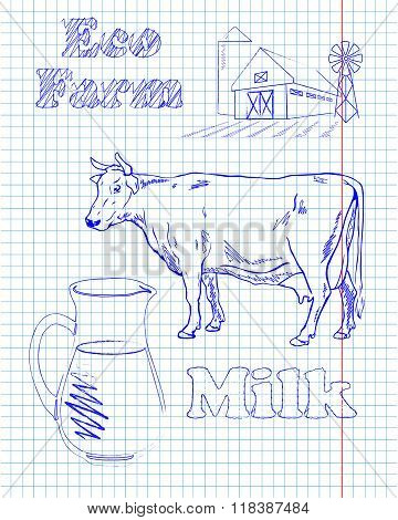Eco Farm With A Cow And Milk