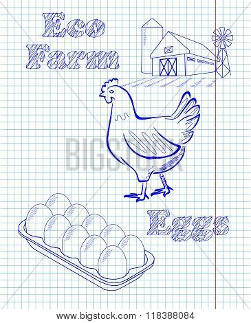Eco Farm With Hen And Eggs
