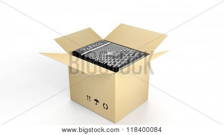 Book on Politics with illustrated cover inside an open cardboard box, on white background.