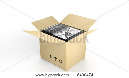 Book on Biographies with illustrated cover inside an open cardboard box, on white background.