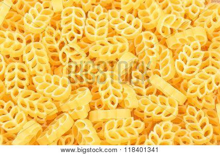 Pasta, Close Up