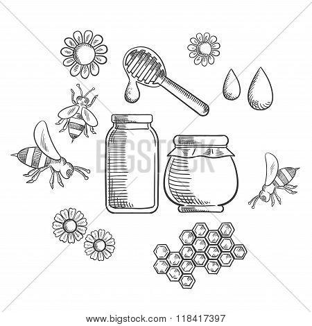 Beekeeping and fresh honey icons