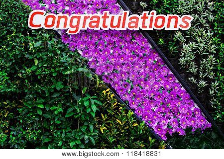 Beautiful background foliage and flowers to congratulate.