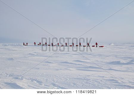 Skiers Go To The North Pole From Russian Ice Camp