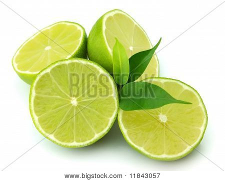 Lobes Of A Lime