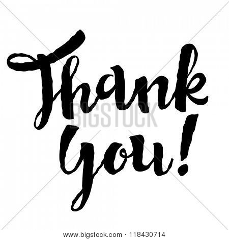 Thank You vector hand written calligraphic bold lettering on white background. Thanksgiving day concept.