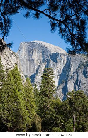 Half Dome Yosemite Np Usa