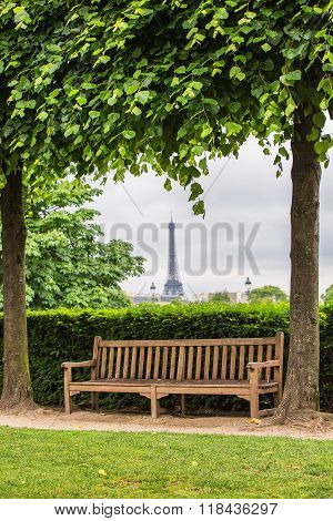 Bench And Tuileries Garden In Paris, France