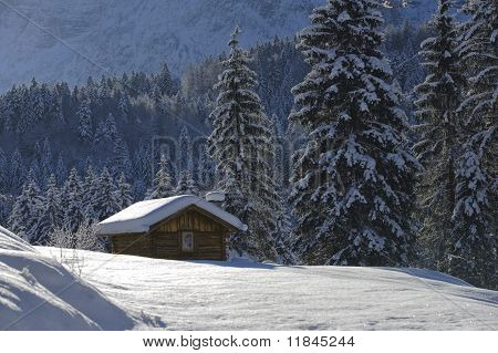 cottage in forest at winter