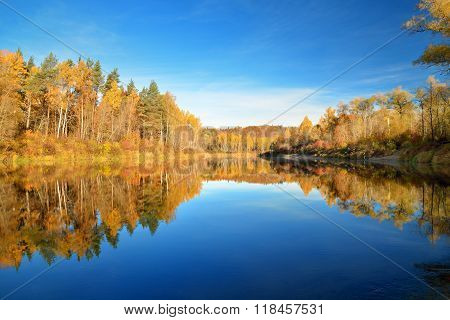 Autumn river Gauja in Sigulda, Latvia. Landscape with yellow autumn trees reflection in river.