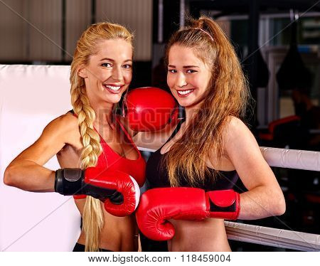 Two  women boxer wearing red  gloves posing in ring. Martial arts.