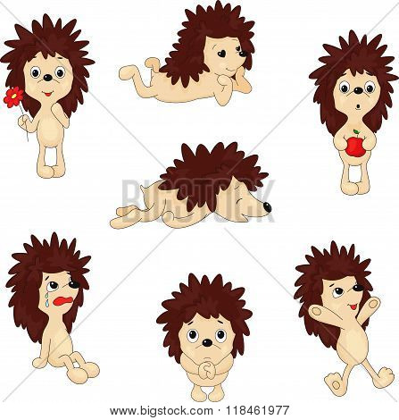 Cartoon Hedgehog Jumping, Sleeping, Crying, Pleading And Holding Apple And Flower