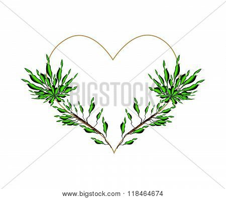 Fresh Green Dracaena Leaves In A Heart Shape